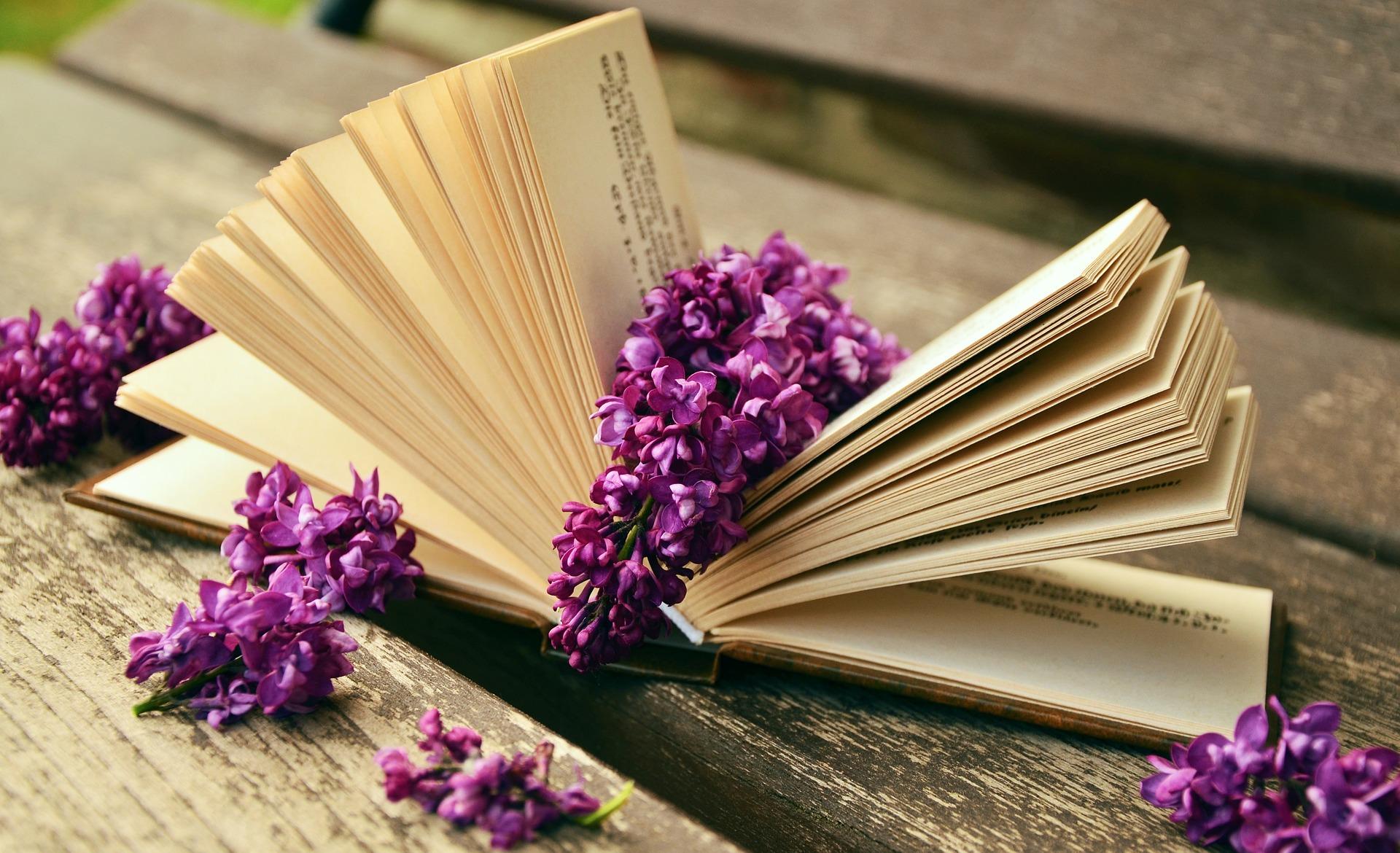 Ler é muito bom e ajuda a melhorar a qualidade de vida
