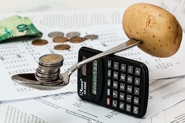 independente financeiramente calculadora