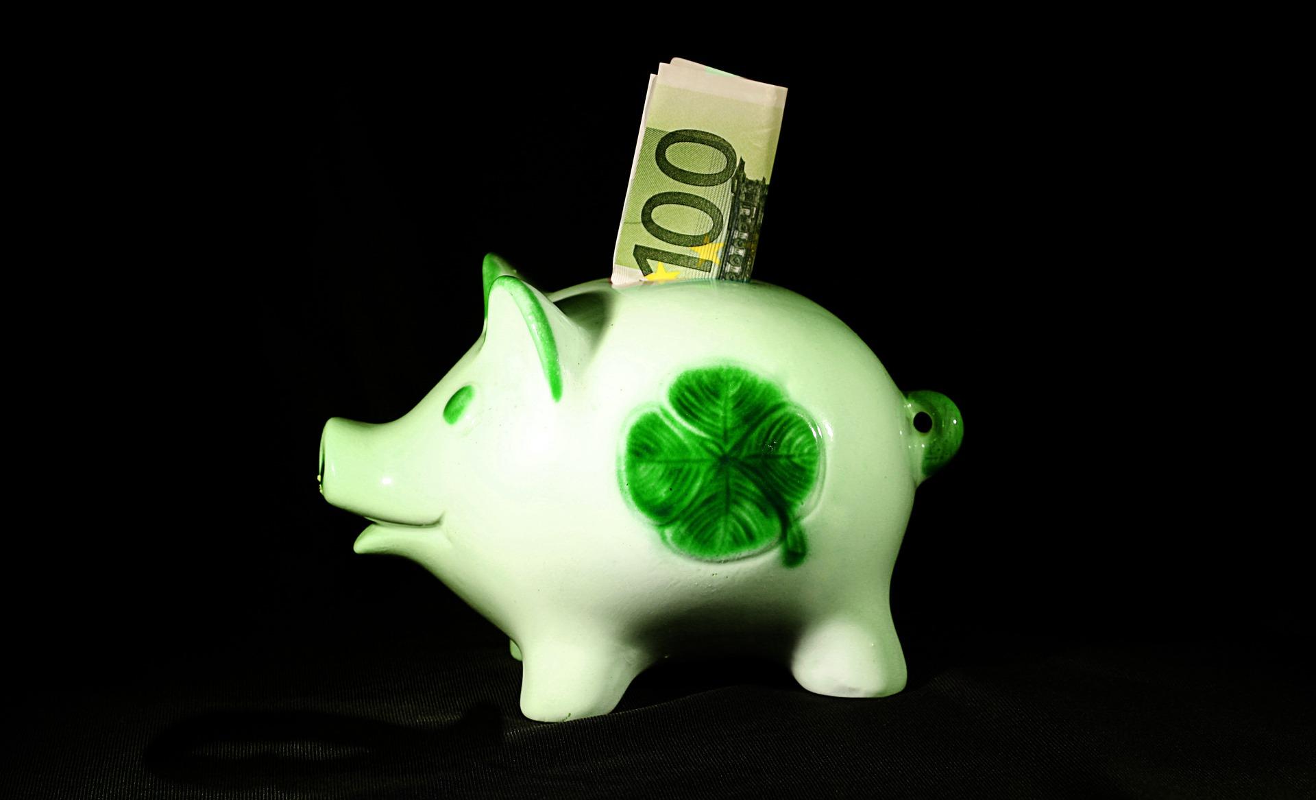 Poupança organizar as finanças pessoais