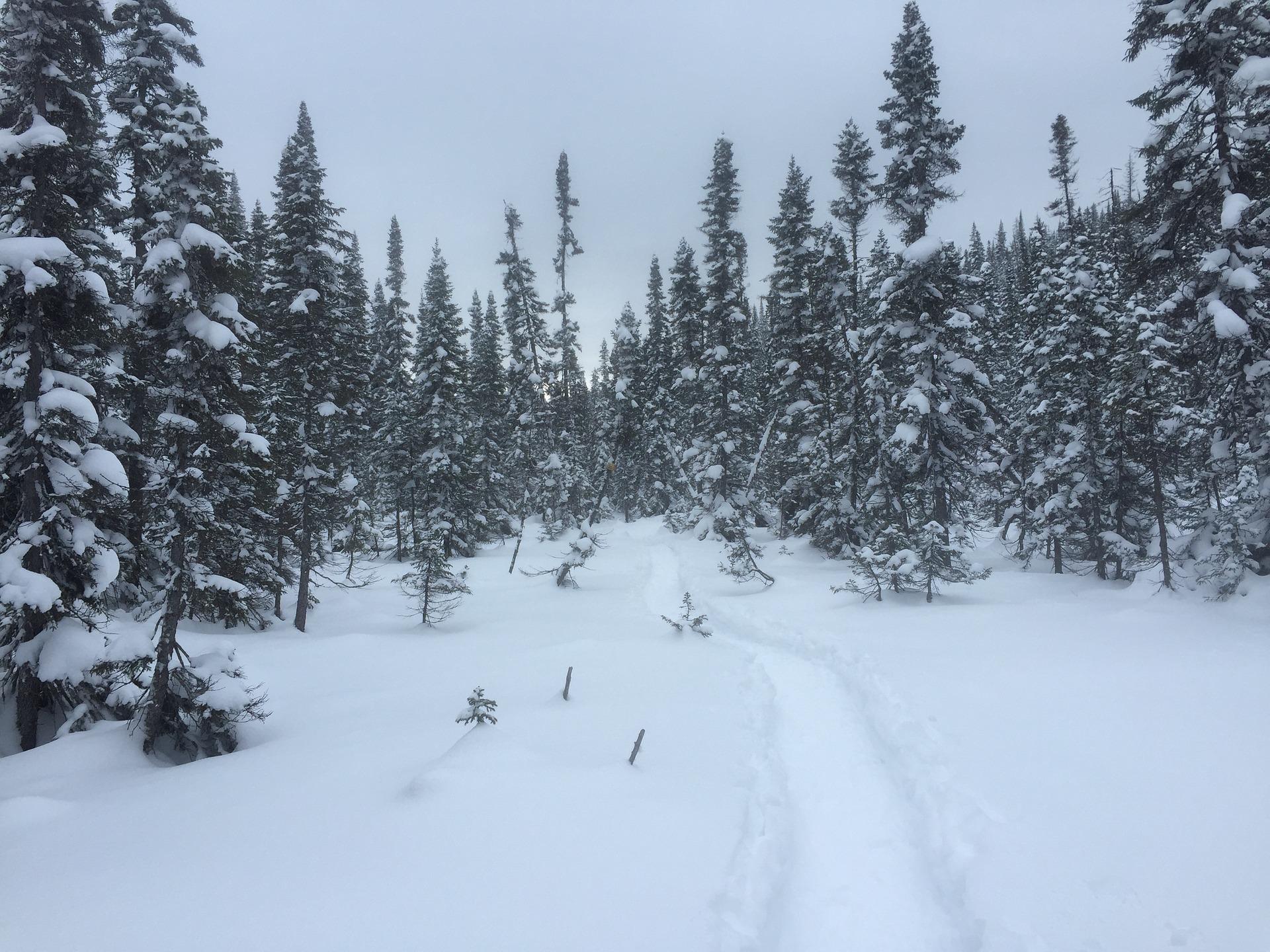 Esquiar é esporte praticado em paisagens deslumbrantes.