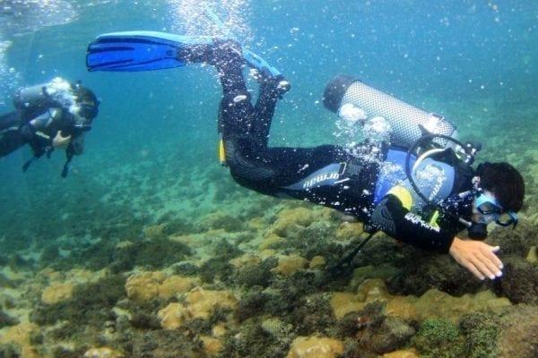 Melhores lugares para mergulhar no Brasil
