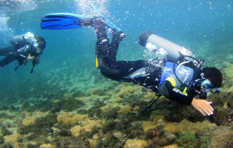 Mergulho em Ilha Bela