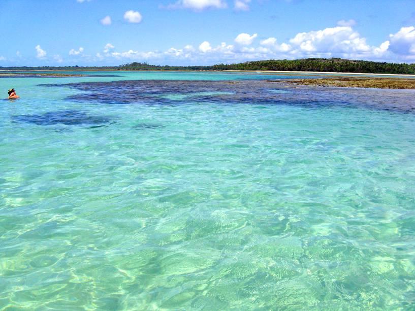 Mergulho no litoral da Bahia é fantástico
