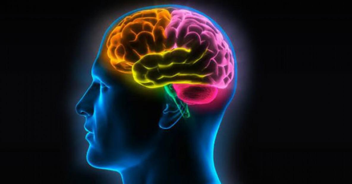 benefícios da PNL cérebro