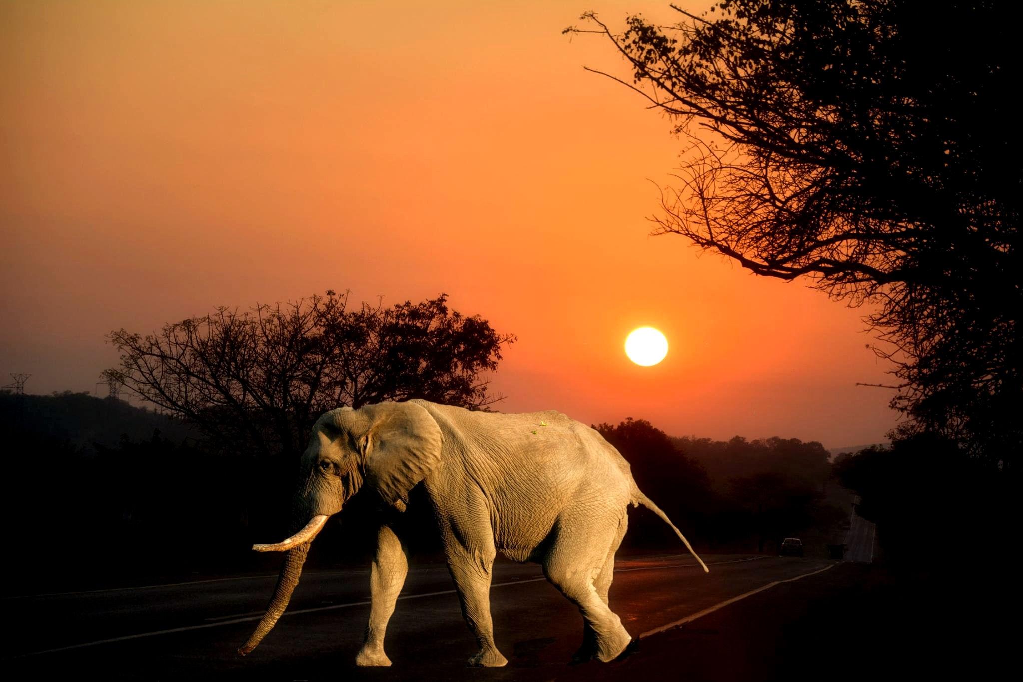 lugares incríveis para conhecer na África do Sul