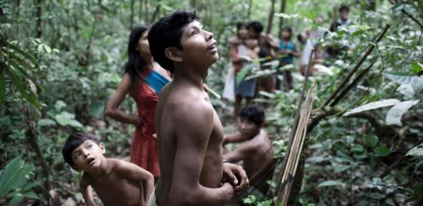 Tribo brasileira awa: uma das culturas exóticas no mundo