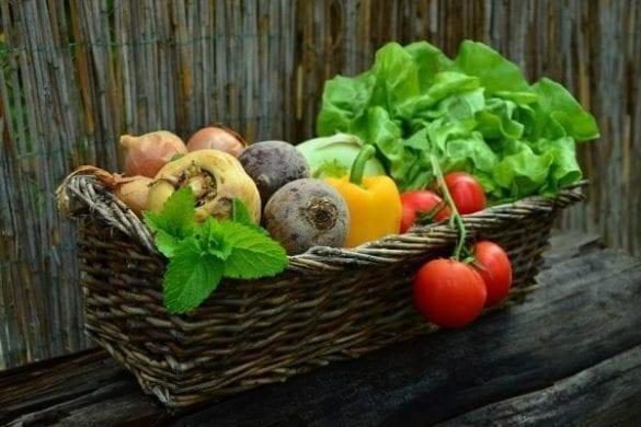 benefícios da alimentação saudável