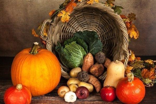 benefícios do vegetarianismo