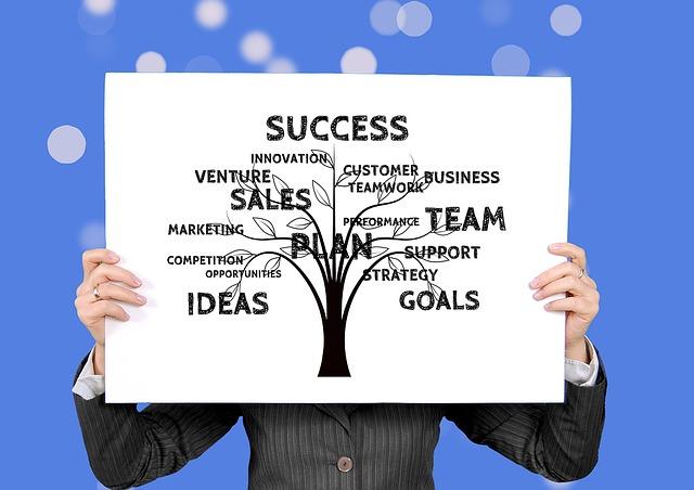 esquematização de como definir metas e objetivos