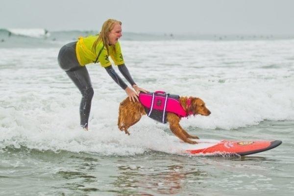 As melhores dicas de surf para quem está começando