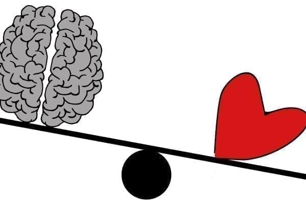 Descubra a importância da inteligência emocional
