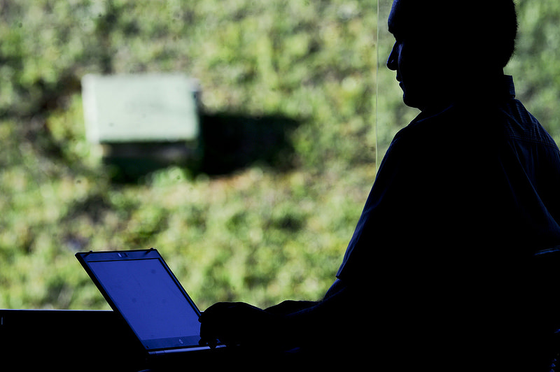 programação de sites, softwares e aplicativos em ascensão