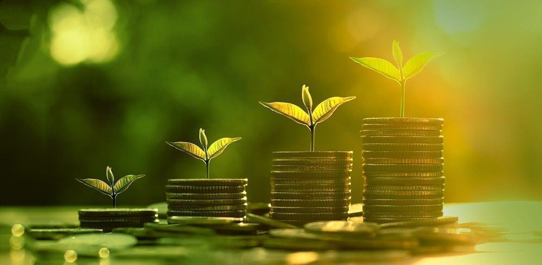 5 dicas de como fazer o dinheiro trabalhar para você