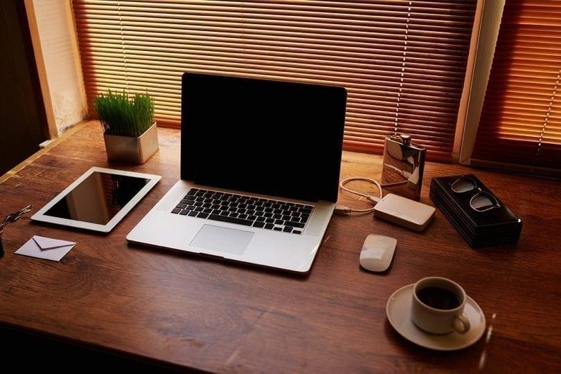 10 lições de empreendedorismo digital